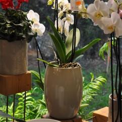 Doniczki do kwiatów Eforia 121/24 sand - kremowo piaskowy