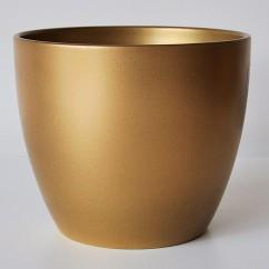 Osłonki na gwiazdy Braga 920/16 złoty - gold